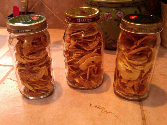 apples made from food dehydrator